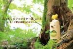 森と光りのファンタジーDM